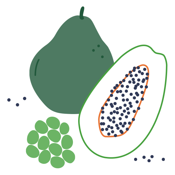 Fruit and Vegetable illustration